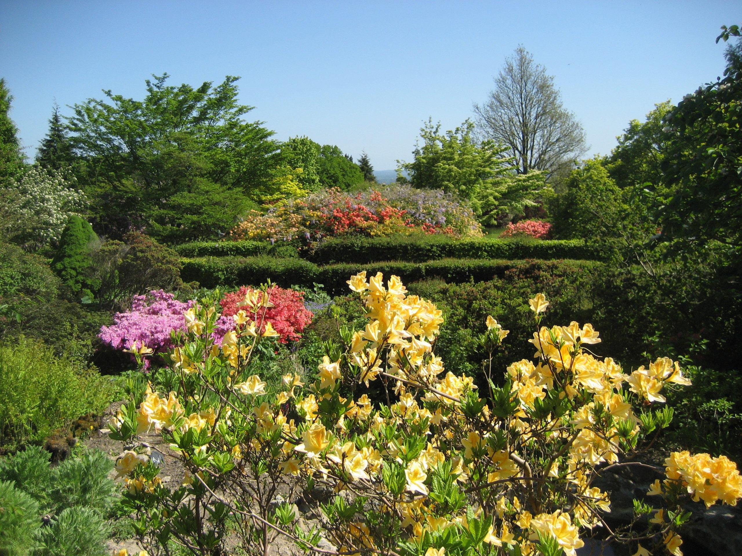 Emmet's Garden
